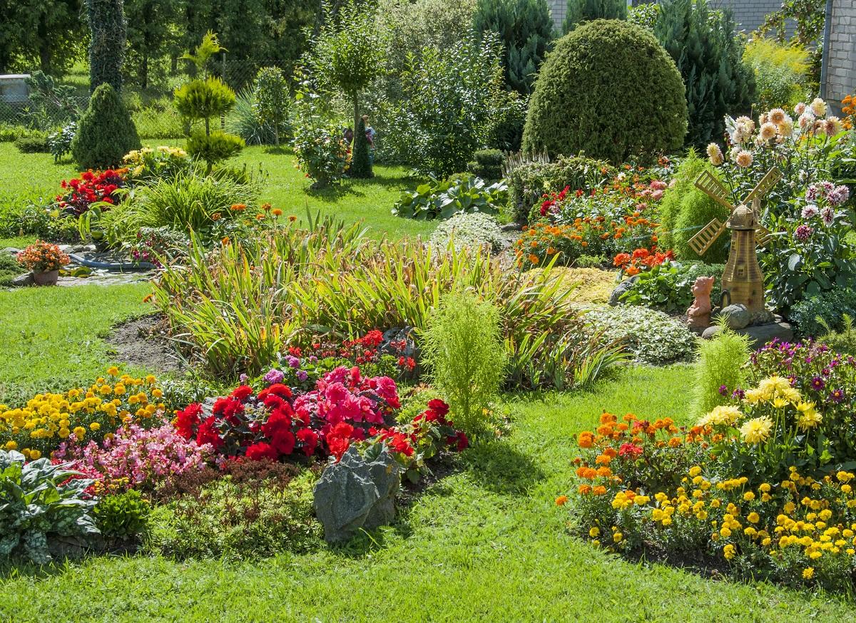 Ogród pełęn roślin.